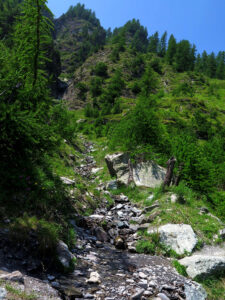 Kapitel 7: Aufstieg ins Valle Antolina. Lauro eilte zu diesem Bach, um Edelfa zu helfen ...