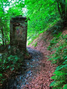 Kapitel 1: Wald um Burg Montemano