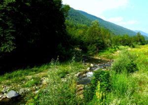 Kapitel 7: Flussauen bei Sampeyre, in denen Edelfa ihr Amulett verliert ...
