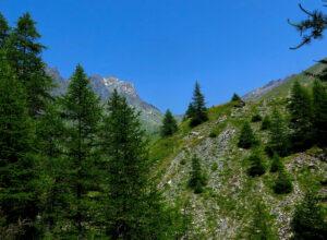 """Kapitel 7: """"Da soll ich hinauf?"""" Edelfa blickt auf den Rocca Bianca 3.099 M.ü.d.M.) nahe des Valle Antolina"""